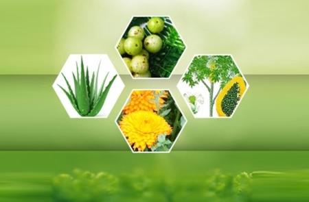 Certified Organic Herbals