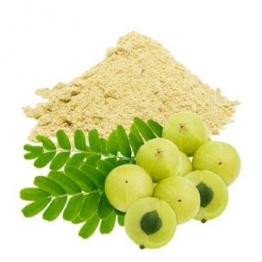 Amla Powder Manufacturer in Russia