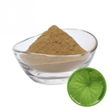 Brahmi Powder Manufacturer