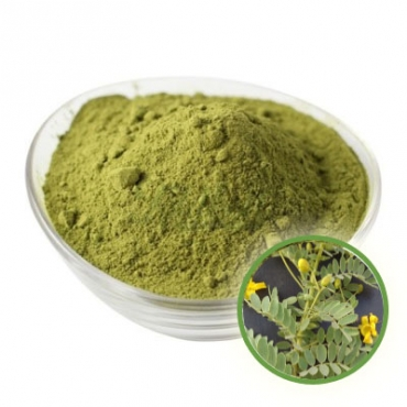 Cassia Obovata Powder Manufacturer in Hungary