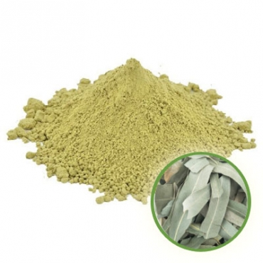 Eucalyptus Powder Manufacturer in Italy
