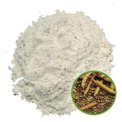 Guar Gum Powder Manufacturer in Italy