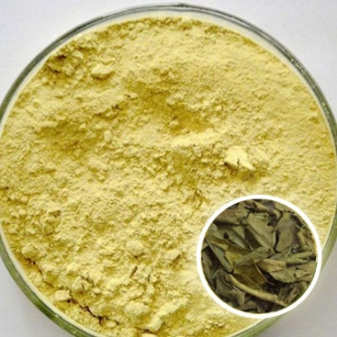 Herbal Neem Face Mask