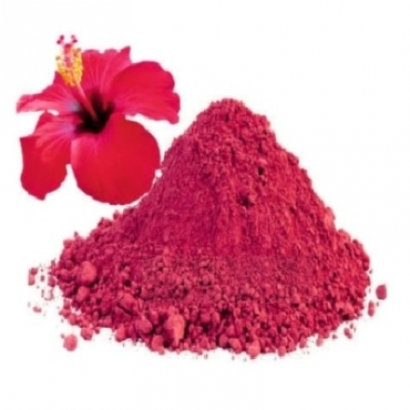 Hibiscus Powder Manufacturer