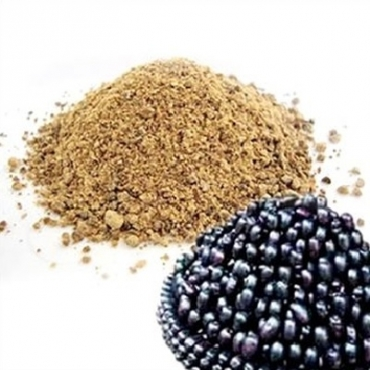 Jamun Powder Manufacturer in Austria