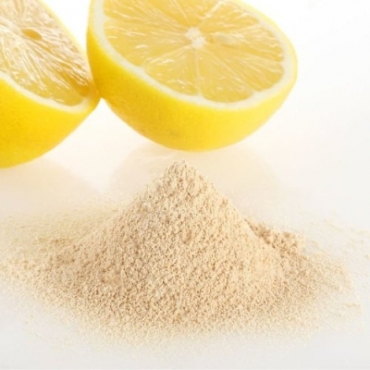 Lemon Powder Manufacturer in Hungary