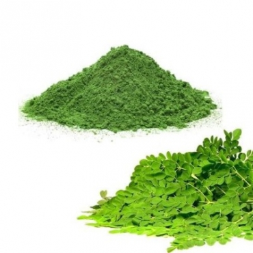 Moringa Leaves Powder Manufacturer