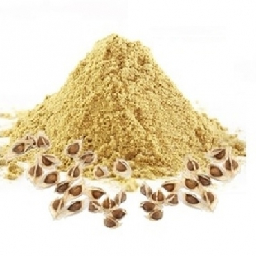 Moringa Seeds Powder Manufacturer