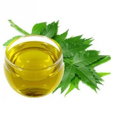 Neem Oil Manufacturer in United Kingdom