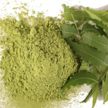 Neem Powder Manufacturer