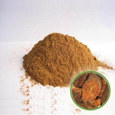 Rhubarb Powder Manufacturer