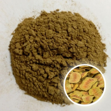 Senna Pods Powder Manufacturer