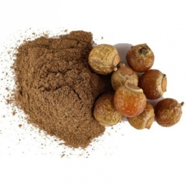 Soapnut Powder Manufacturer