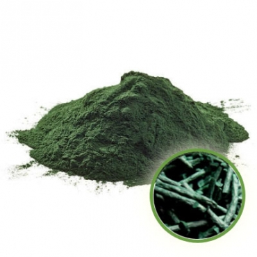 Spirulina Powder Manufacturer