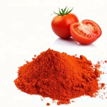 Tomato Powder Manufacturer in Czechia